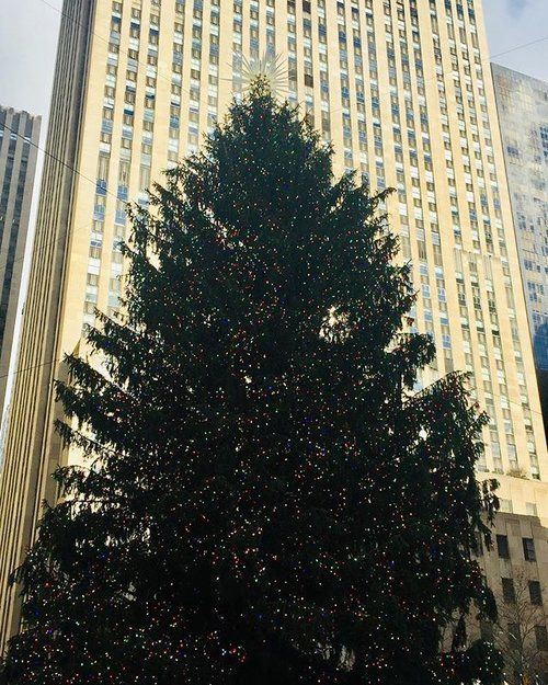 How beautiful is the #RockefellerChristmasTree?! It's even more majestic in person ✨ Hope everyone has a great weekend!