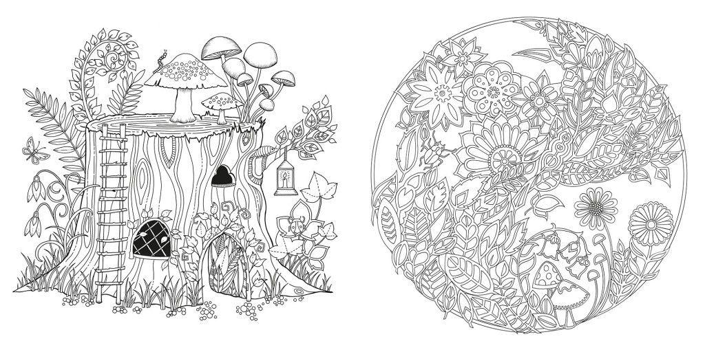 Livro Jardim Secreto Coloracao Adulta Livro Floresta Encantada