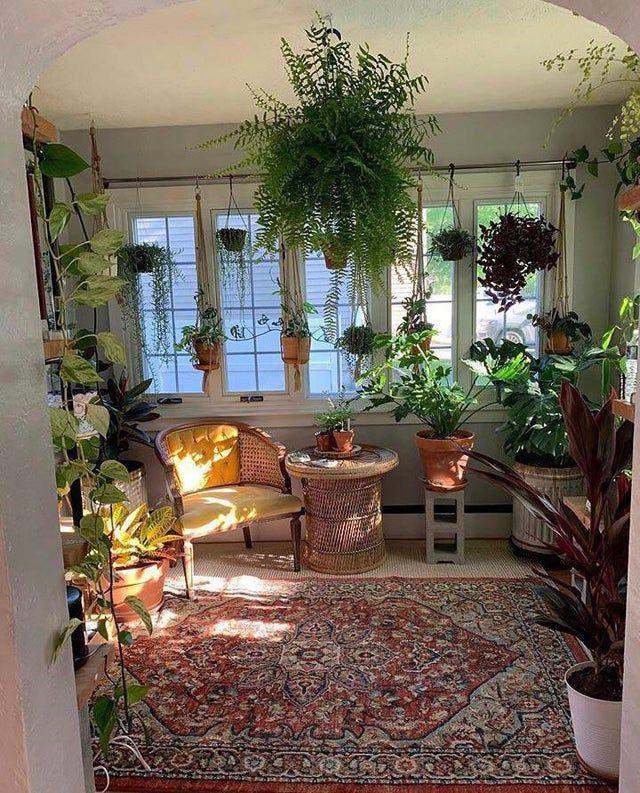 thegardeninthelittlebrickhouse in 2020 Room with plants