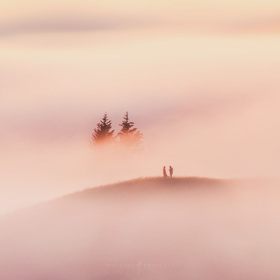 """Together We Stand - Hey everyone subscribe to my newsletter for tutorial and workshop updates:  <a href=""""http://eepurl.com/bBFenf"""">CLICKHERE</a>   The best moments are shared with people you care about, even if you are a tree ;)  Shot during a foggy sunset in Marin County."""