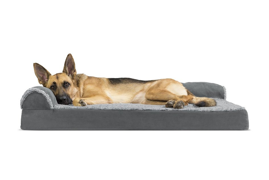 Furhaven Two Tone Deluxe Chaise Memory Top Cat Dog Bed W Removable Cover Stone Gray Jumbo Chewy Com Dog Pet Beds Furhaven Dog Bed