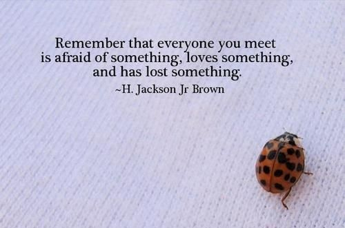 Remember that everyone you meet is afraid of something, loves something and has lost something.