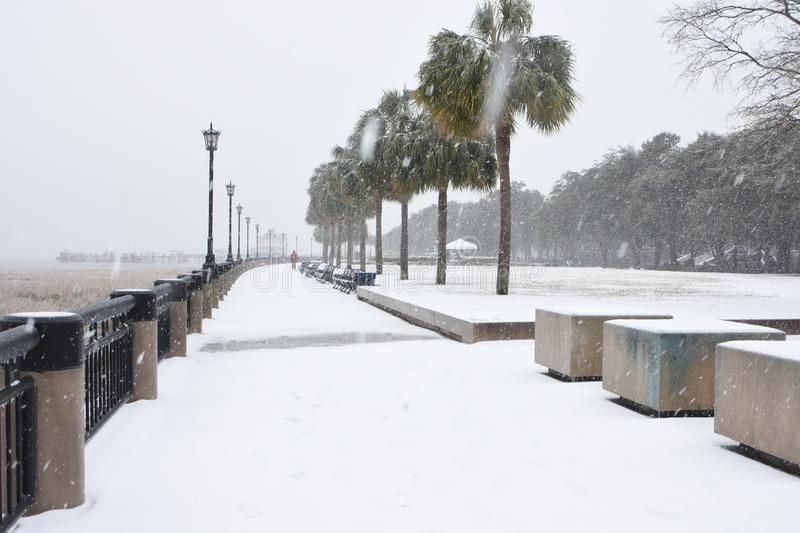Snowstorm in Charleston, South Carolina. Waterplace Park and its palmetto trees ,