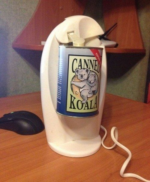 #Веганство #Вегетарианство #goVegan #greenelk #Vegan #greenelkshop #воронеж #инфопост  Консервированная коала из Австралии.