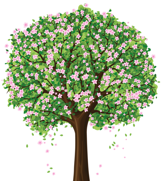 Spring Tree Png Clipart Crafting Trees Pinterest Spring Tree Spring And Picture Tree