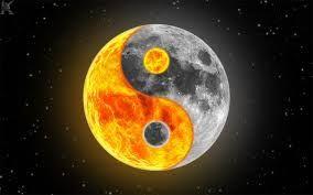 La Festa Della Luna Il Coniglio Lunare Lo Yin E Lo Yang La