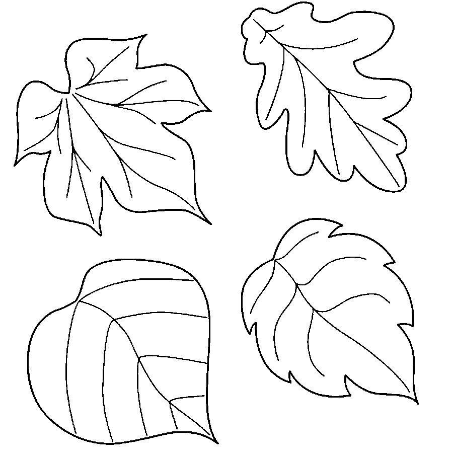 Листья деревьев Раскраски распечатать бесплатно. в 2020 г ...