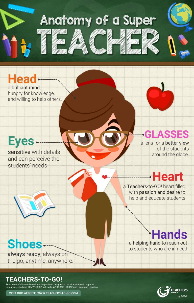Anatomy of a Super Teacher   Infographics   Pinterest   Anatomy ...