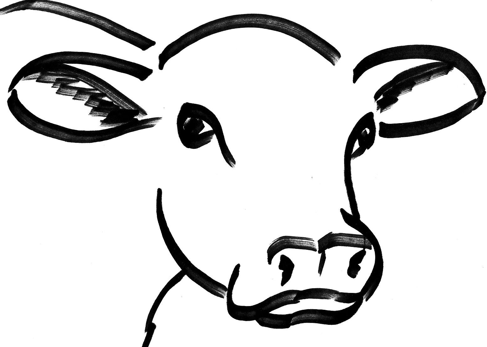 Cow Head Drawing Pinteres