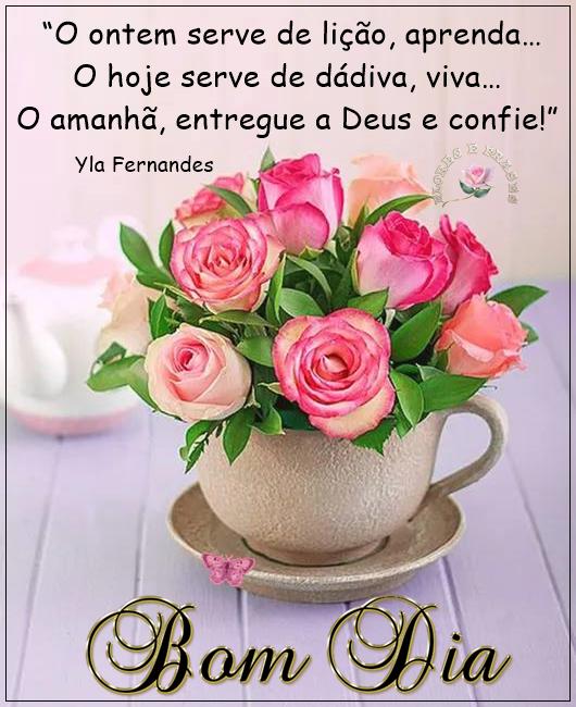 Viva O Hojeflores Frases Frases De Bom Dia Mensagens Para