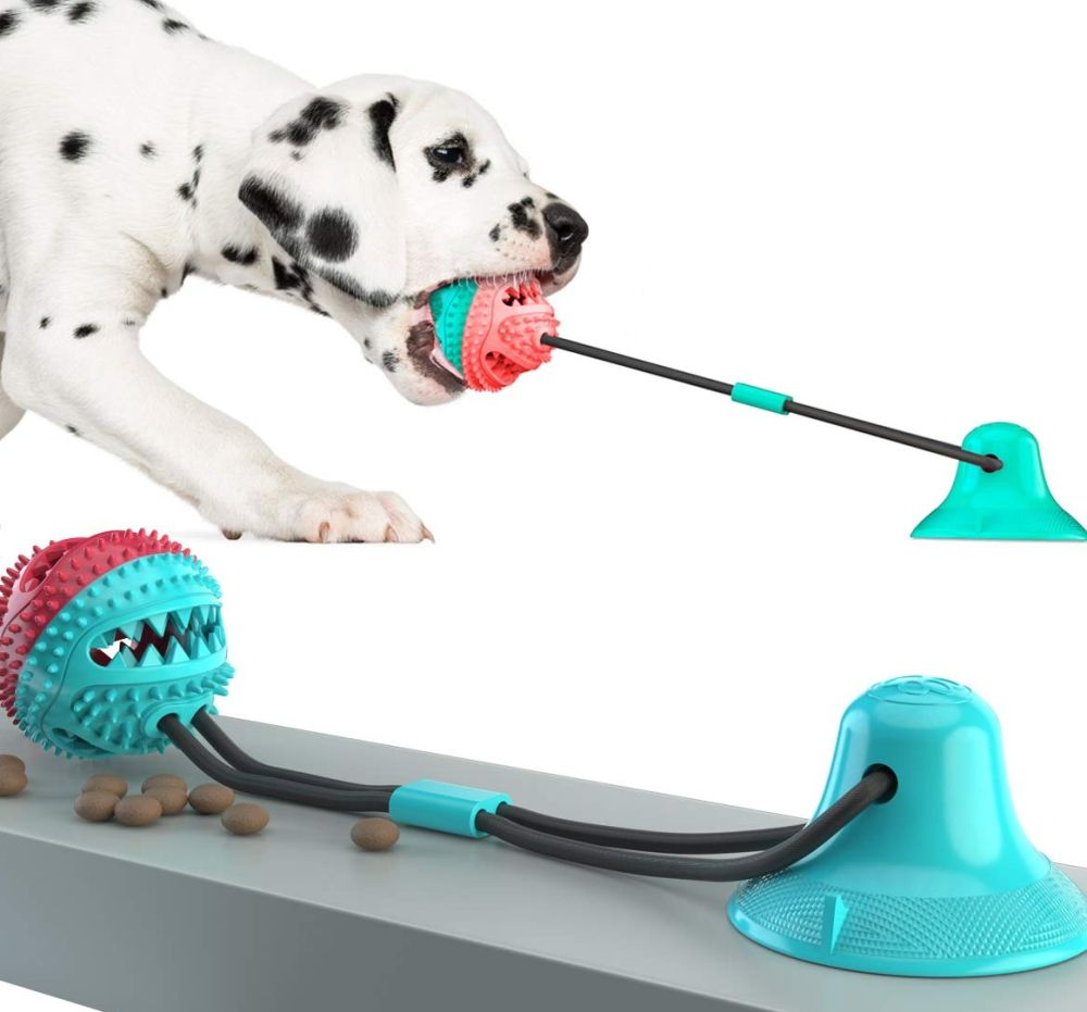 Dog Tug Toy with Suction Cup in 2020 Dog toys, Toy