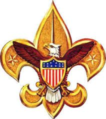 Image result for what is scout