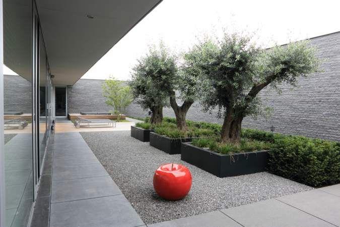 Moderne tuin met patio puurgroen tuinontwerp