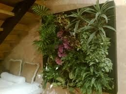 Resultado de imagen de jardines verticales de interior
