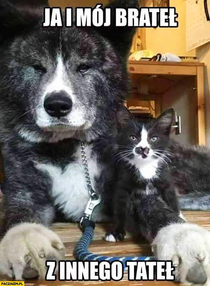 Ja I Mój Brateł Z Innego Tateł Pies I Kot Psy Pinterest Pies