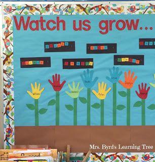 Five For Friday Garden Theme Classroom Kindergarten Bulletin Boards Kids Bulletin Boards