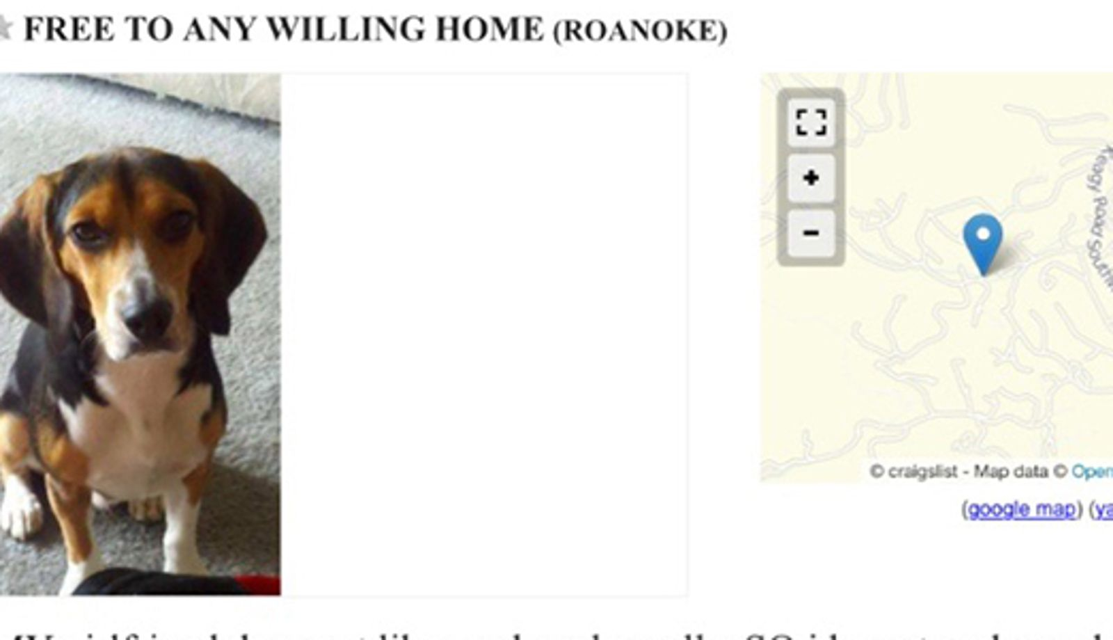 how to post a pet ad on craigslist