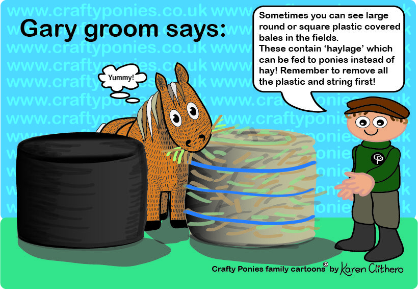 Gary The Crafty Ponies Groom Shows Us Some Haylage Family