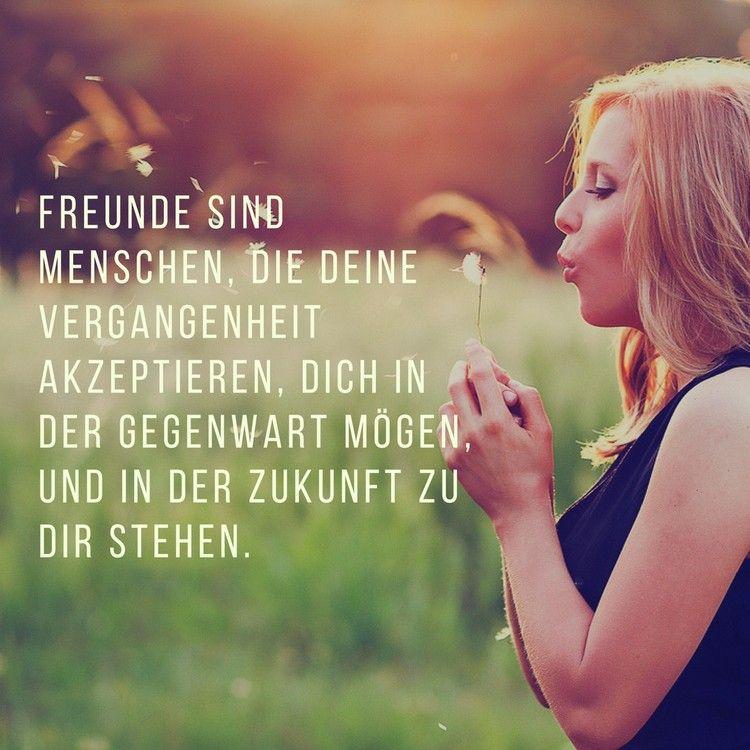 40 zitate über freundschaft und freundschaftssprüche für