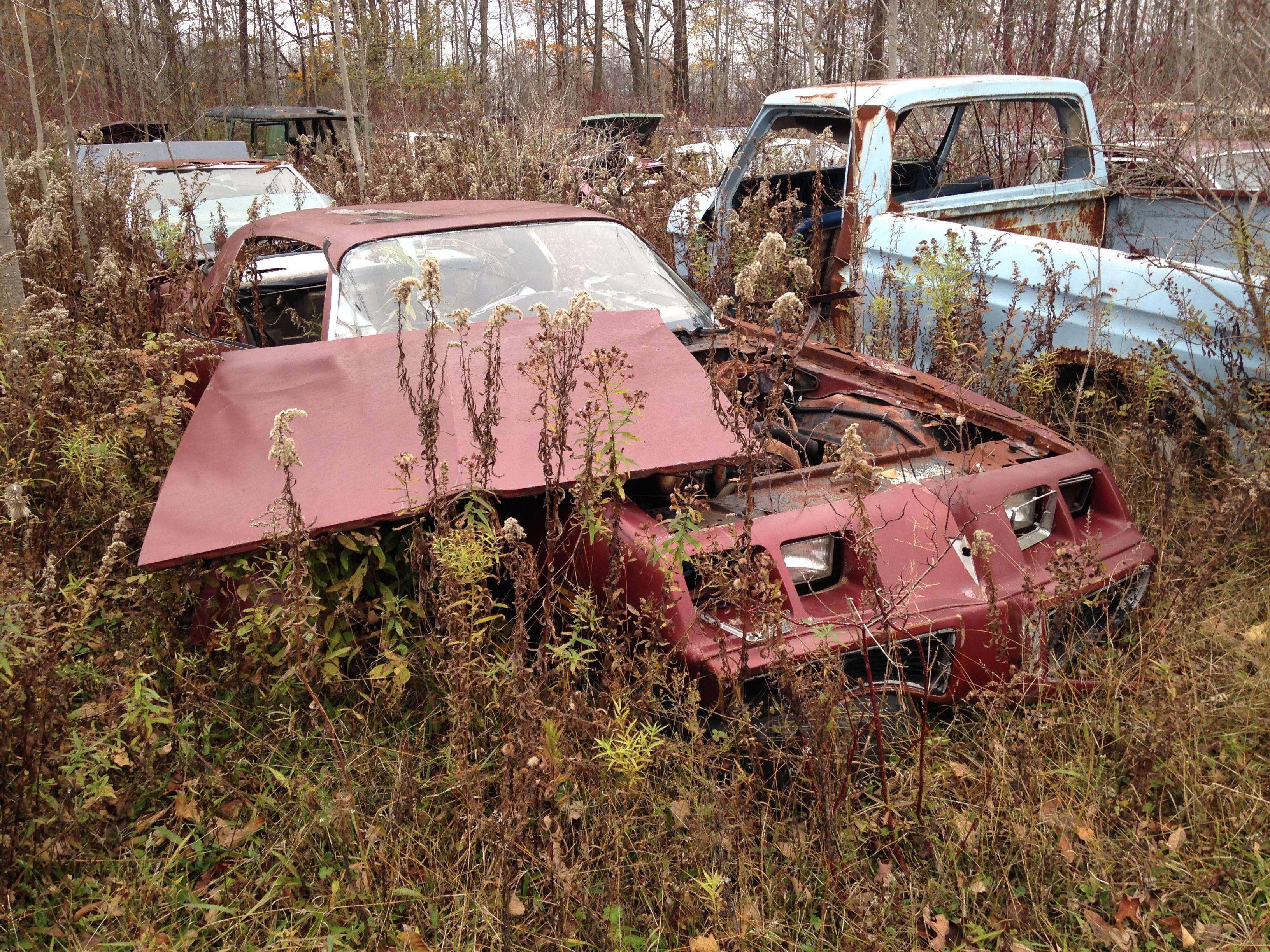 1980 pontiac firebird mclean s auto wreckers 2014 cars