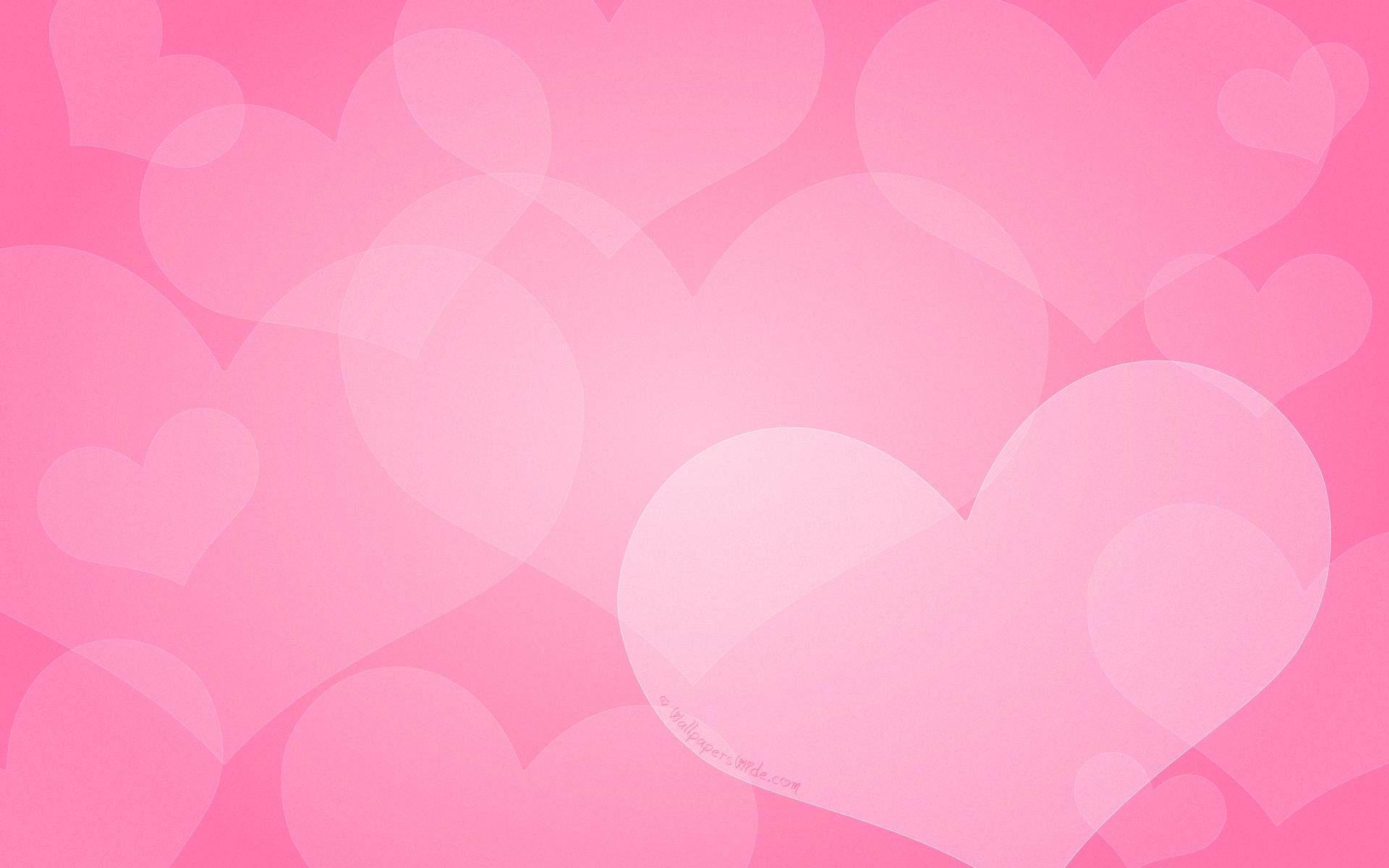 Fontana Ca Pink Wallpaper Love Wallpaper Valentines Day Background