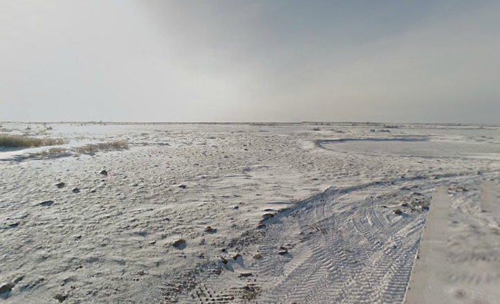 'Polar Bear Capital Of The World' Now On Google Maps; New Photos 'Connect People To The Arctic'