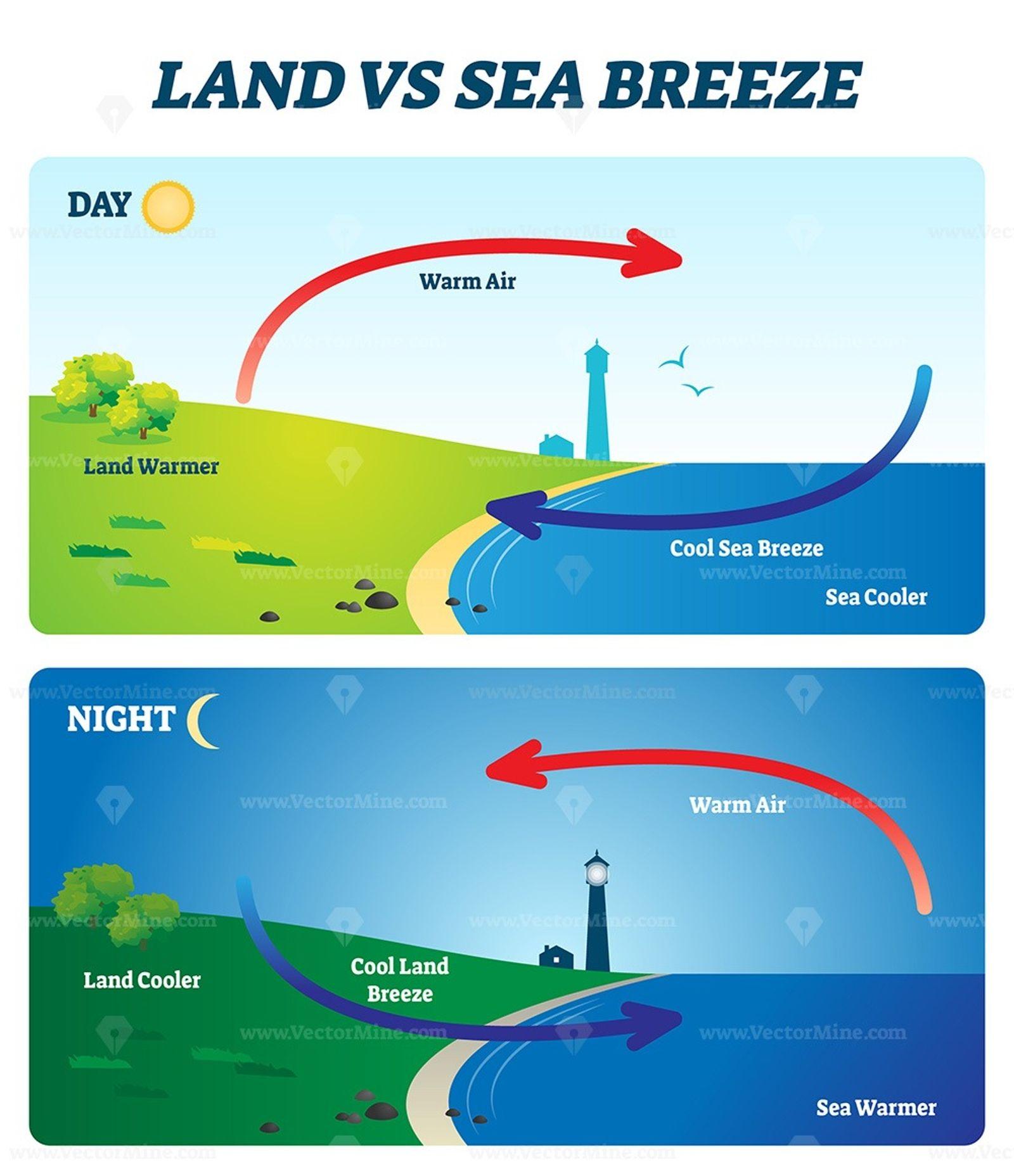 Land Vs Sea Breeze Vector Illustration In