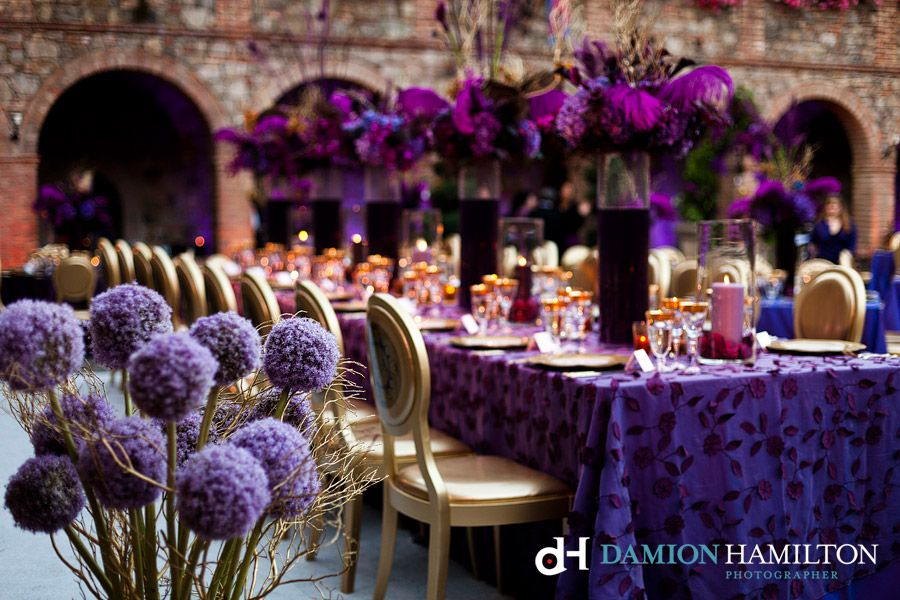 Castillo di amorosa sasha souza damion hamilton detail photography castillo di amorosa sasha souza damion hamilton detail photography purple gold royal themed feathers junglespirit Choice Image