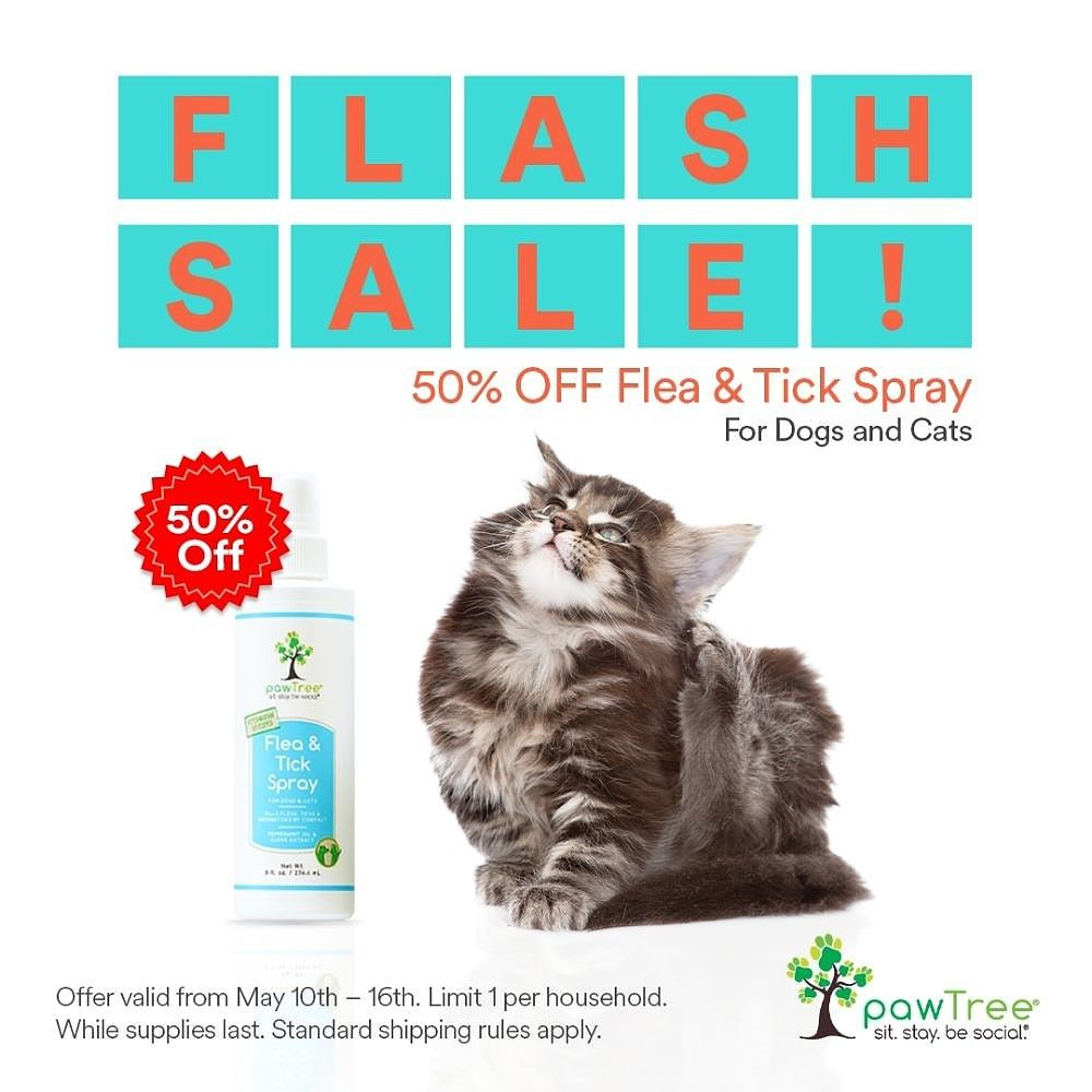 Who Has Pets This Is An All Natural Flea And Tick Spray That Kills Fleas And Ticks Along With Flea Eggs On Contact Fleas Tick Spray Flea Prevention