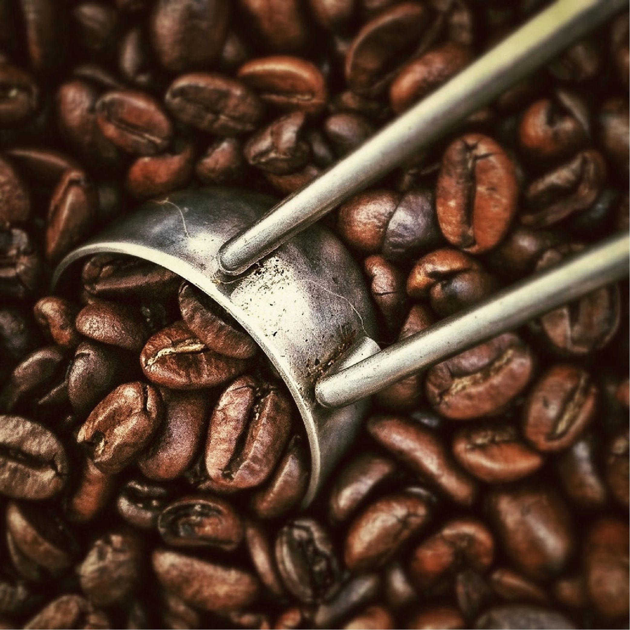 THE BEST COFFEE BEANS IN THE WORLD COULD BE YOURS..... www ...