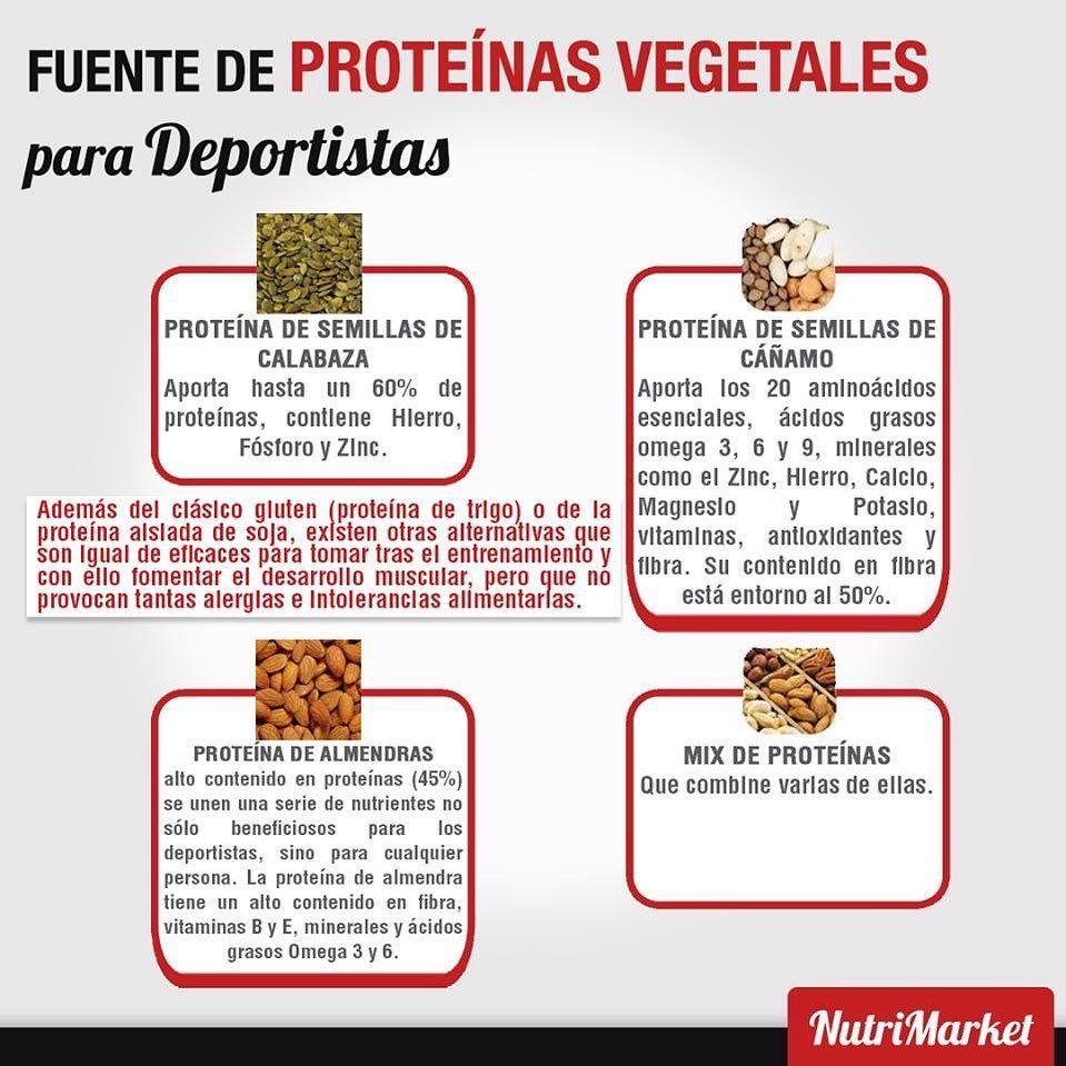 Necesidades De Proteinas En Deportistas Veganos Las Proteinas