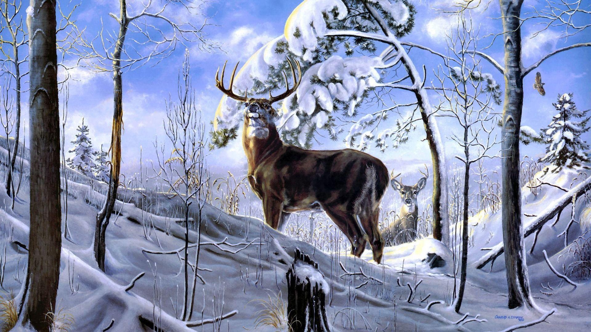 Скачать обои зима, лес, снег, деревья, олень, арт, Charles ...