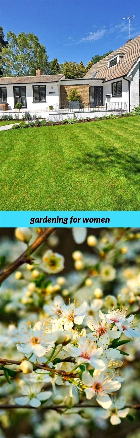 Gardening For Women 272 20180915175720 53 Container Gardening In