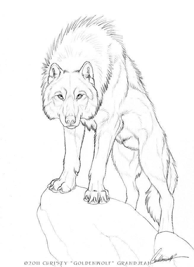 Adonis by Goldenwolf.deviantart.com on @deviantART-very