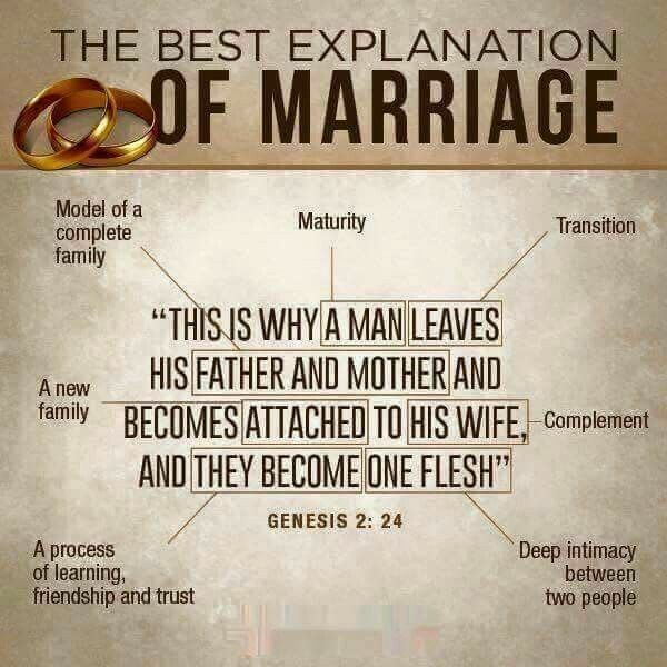 Relationship Bible Quotes Mesmerizing Pinrachid Chikh On Ministère  Pinterest  Relationships Bible . Decorating Design