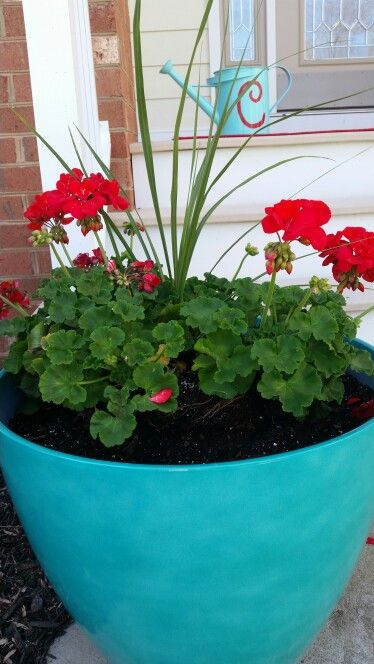 Turquoise Planters With A Pop Of Red