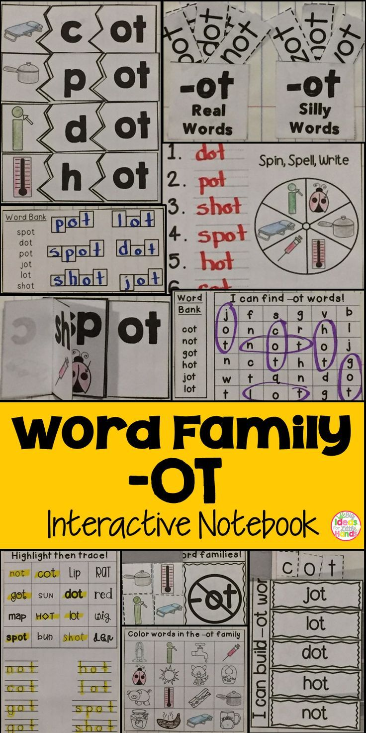 OT Word Family Interactive Notebook Word search Phonics and