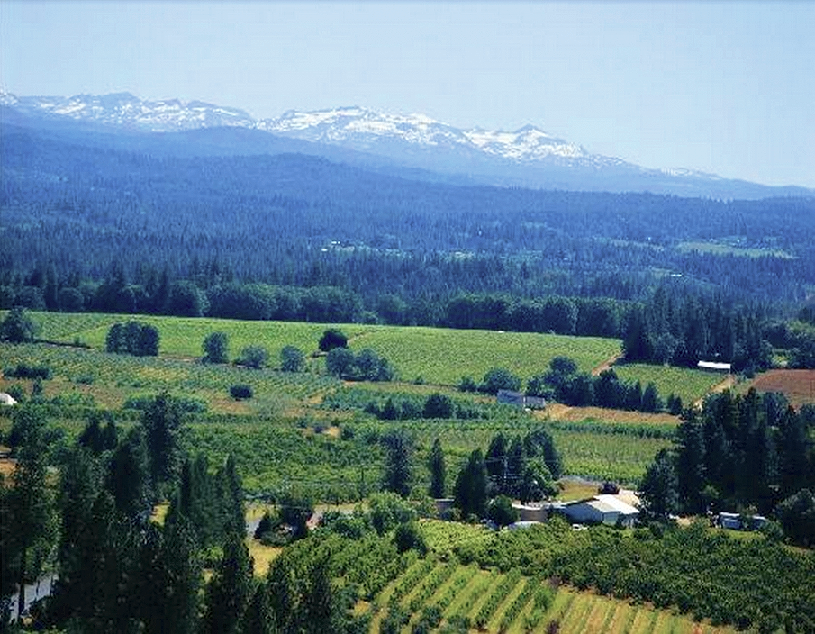 Goaltaca El Dorado Wine Country In The Sierra Foothills Ranging From 1200 To 3600 Ft Wine Country California Placerville California El Dorado County