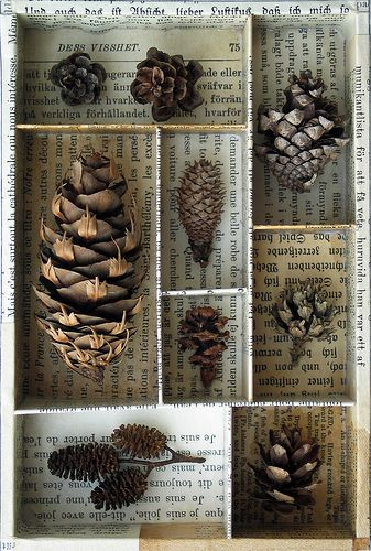 nature collection- it could be anything... feathers, pine cones... hot glued. Calligraphed paper would be even nicer than newsprint.