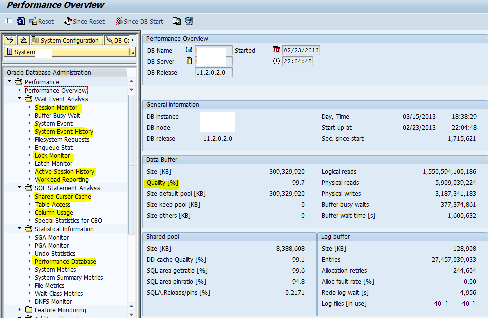 How to monitor database performance in SAP OJAYO Sap