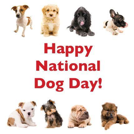 Happy National Dog Day 2018