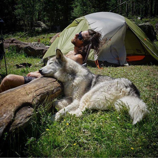 acampar (4) My Dog Owns Me Kat Morris Your Property Matters LLC