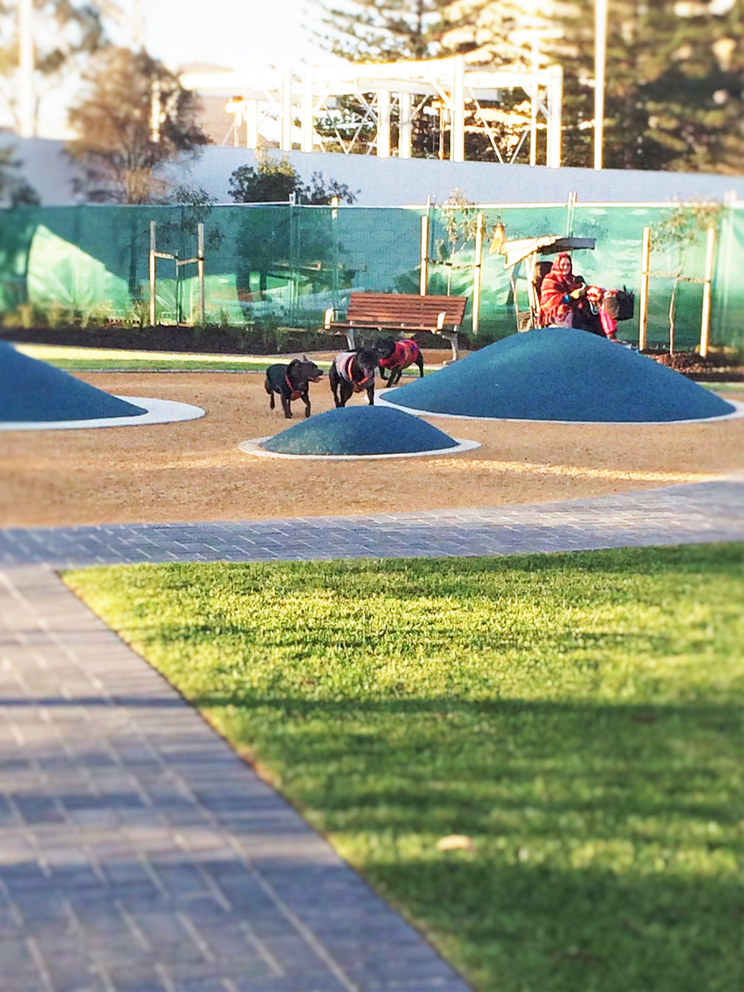 13+ Garden city park animal hospital ideas