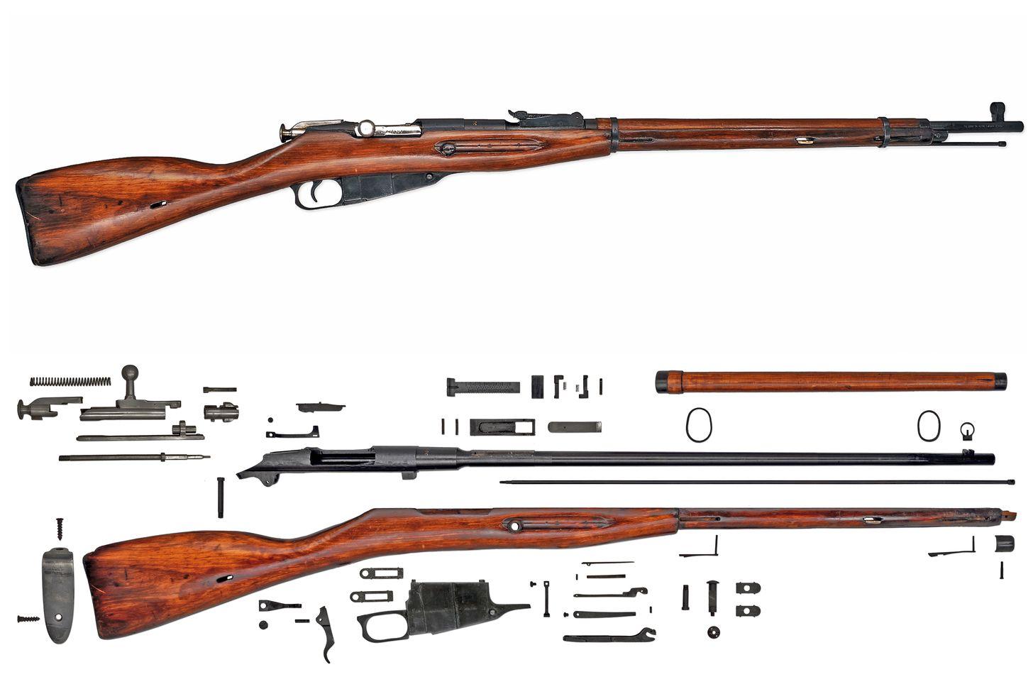 Anatomy Project: Rifles (First Batch)