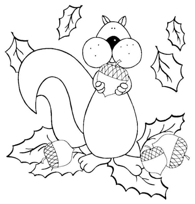 Cute Cartoon Squirrel Coloring Pages Pattern Design
