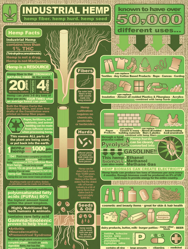 Industrial Hemp - 50,000 USES  Why is the USA , the Largest importer of hemp products.   #hemp #crazy #usa #vote