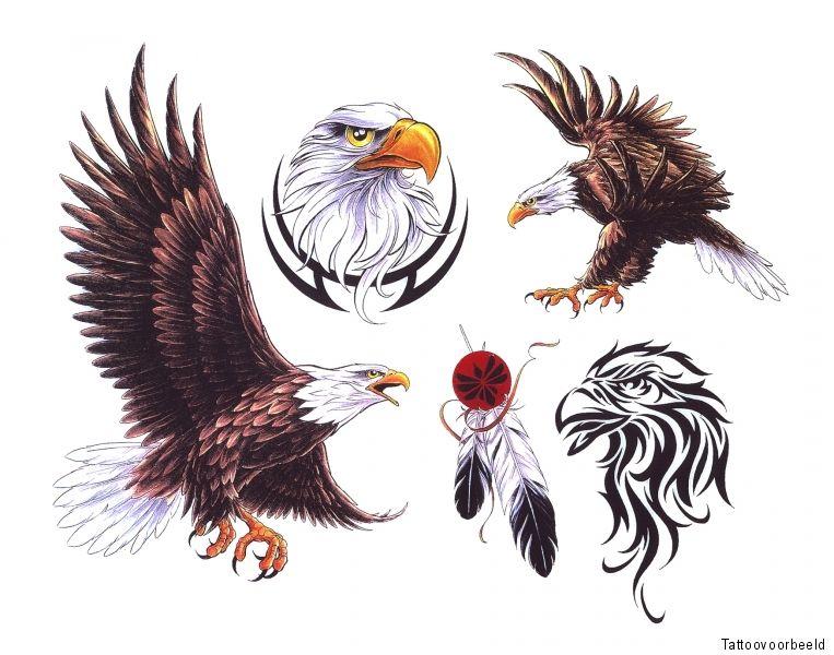 51 Deadliest Predator Tattoo Designs Ideas For Men: Animal Tattoo Designs Dieren Tattoo Designs