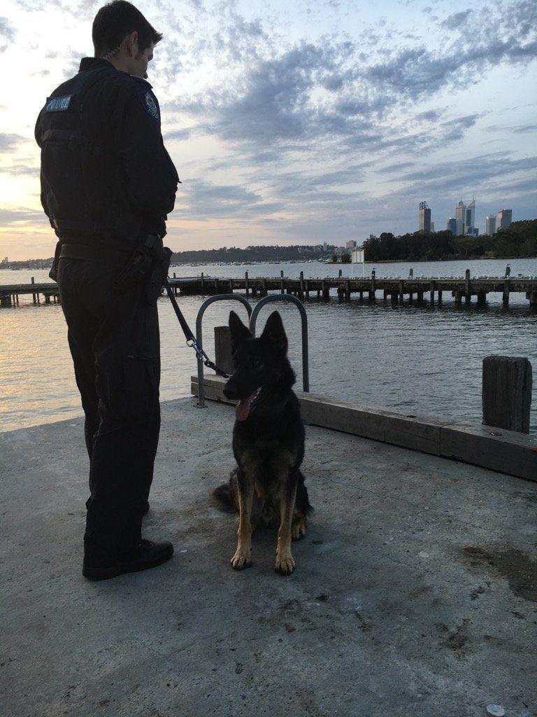 Tweetdeck Police Dogs Dogs Police