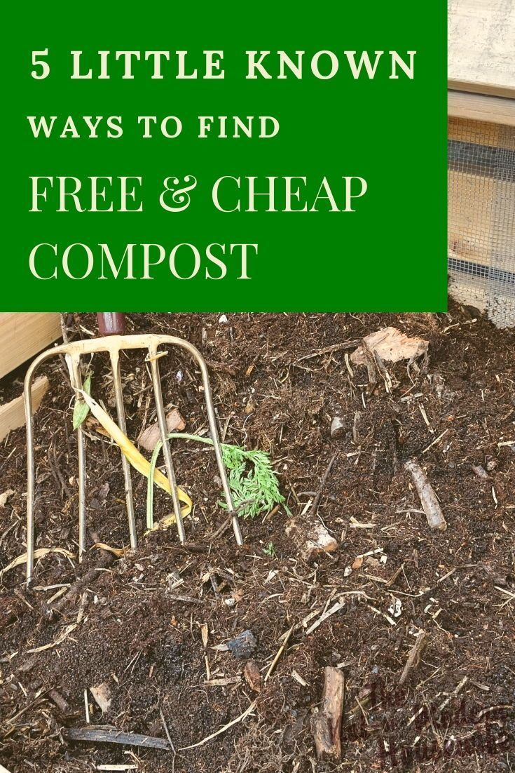 5 little known ways to find cheap compost organic