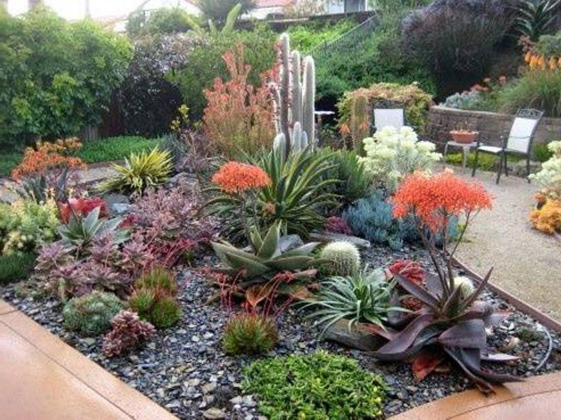 Beautiful Garden With Succulent And Cactus Combined Other Ornamental Plants 12 Landscaping